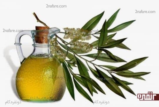 روغن درخت چای برای بیماری التهابی لگن