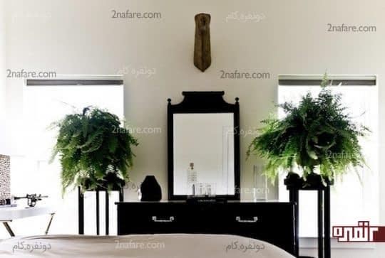 استفاده ی متقارن از گلدانی زیبا در کنار آینه و کنسول
