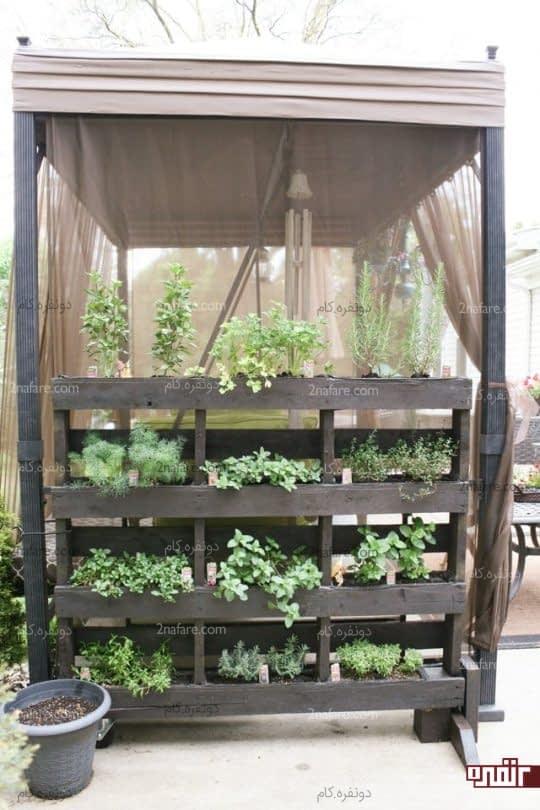 باغچه ی عمودی چوبی پر از سبزیجات تازه