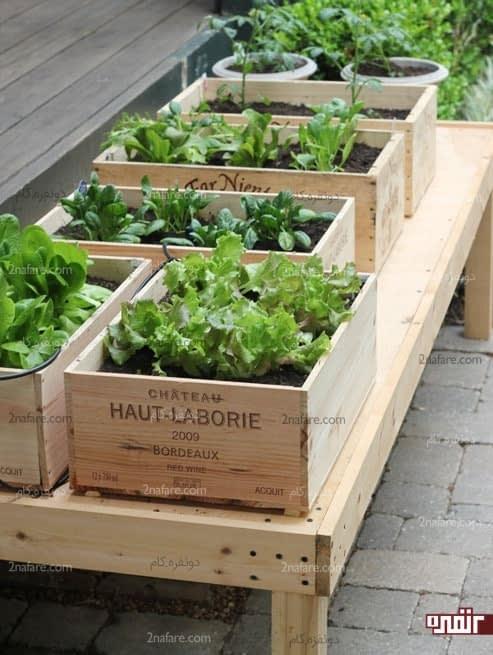باکس های کوچک چوبی برای کاشت سبزی قابل حمل و سبک