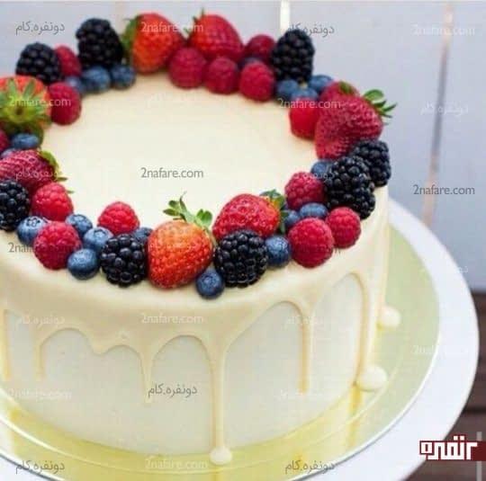 تنوع رنگی میوه برای تزیین کیک تولد
