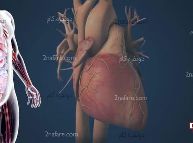 علائم چربی خون بالا در بدن