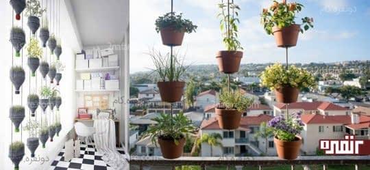 پرورش سبزی و صیفی جات در آپارتمان