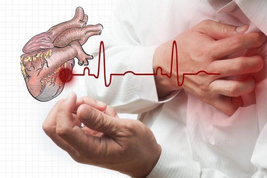 از بیماریهای قلبی جلوگیری میکند