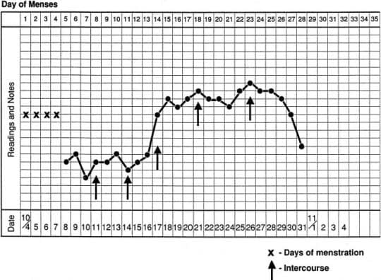 بالا ماندن دمای بدن بعد از روز 16 بارداری