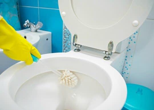 شستن توالت فرنگی با برس