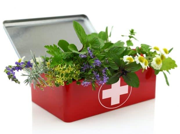 گیاهان دارویی جایگزین داروهای شیمیایی