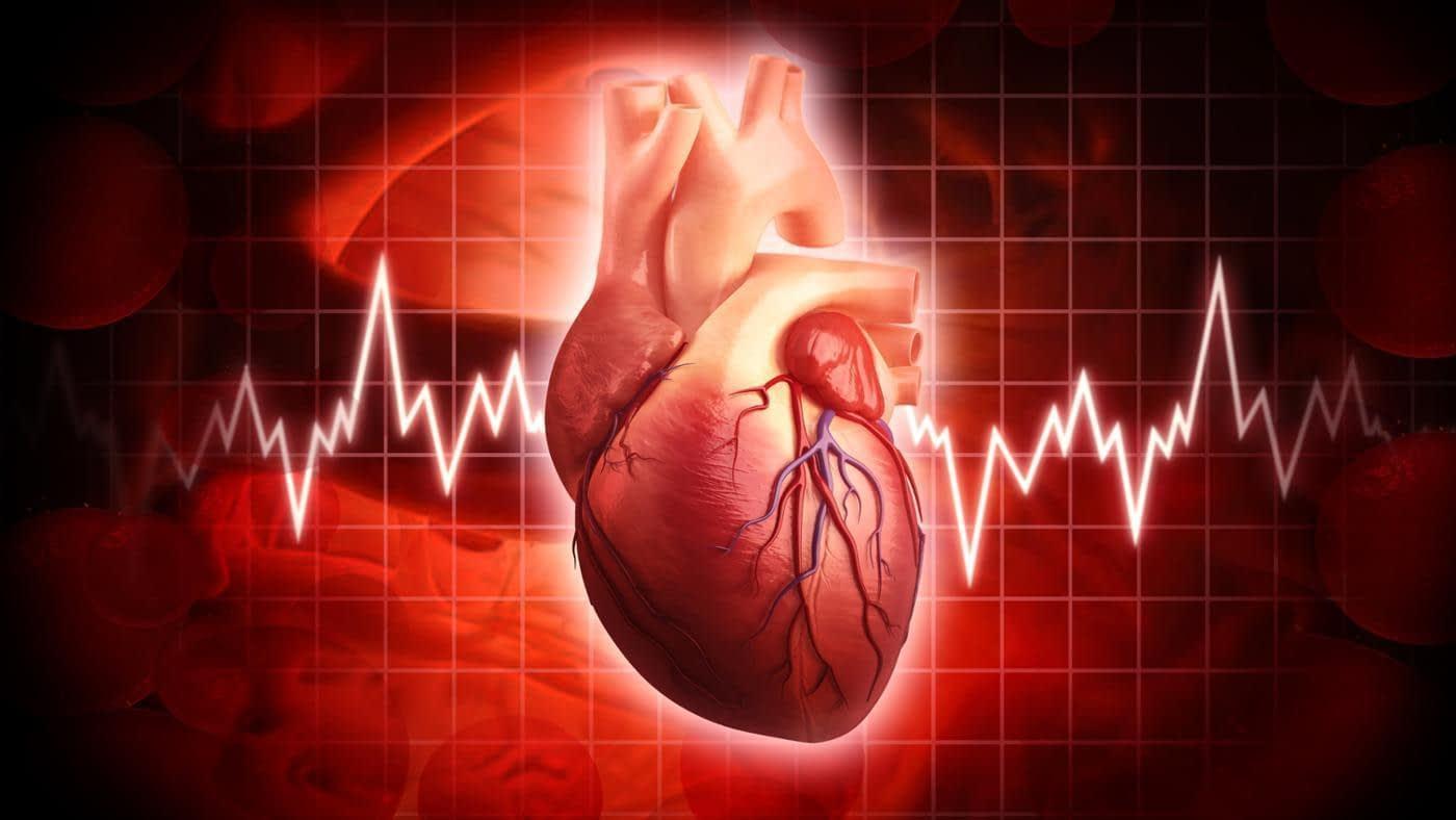 عوامل موثر بر ضربان قلب • دونفره