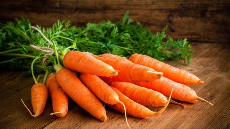 فواید هویج برای بدن
