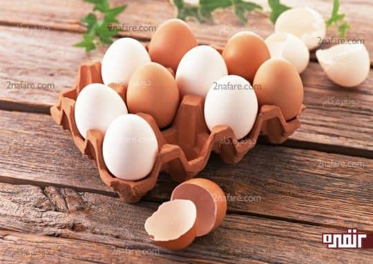 تخم مرغ بهترین منبع پروتئین