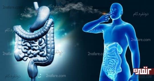 سیگار عامل موثر بر سوزش معده