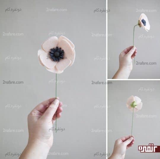 گل شقایق ِ نمدی