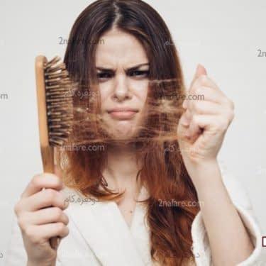 درمانهای گیاهی برای ریزش مو