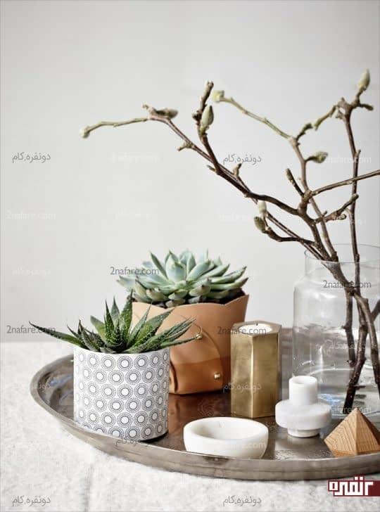 مجموعه ای زیبا از گلدان ها و اکسسوری های جذاب برای استفاده در اتاق نشیمن