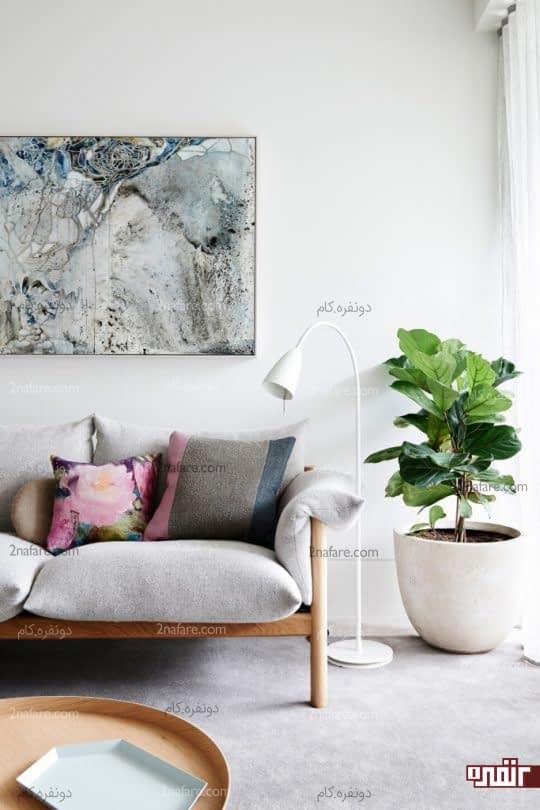 گلانی زیبا و گیاهی متمایز برای قرار دادن در کنج اتاق نشیمن