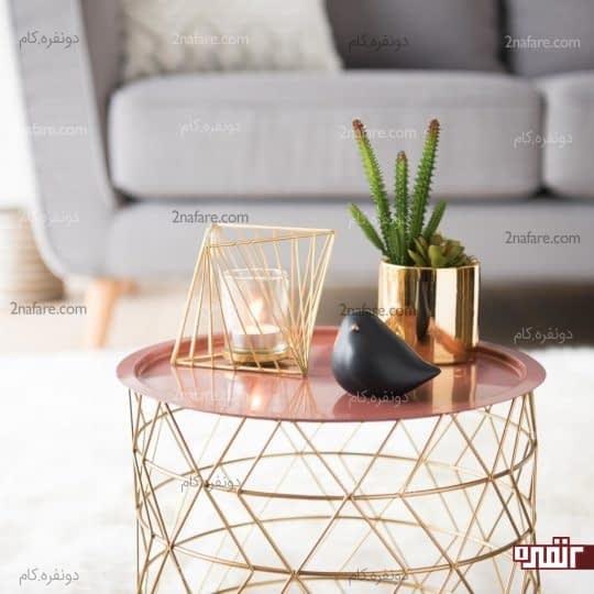 گلدان با رنگ طلایی برای کاشت کاکتوس های زیبا