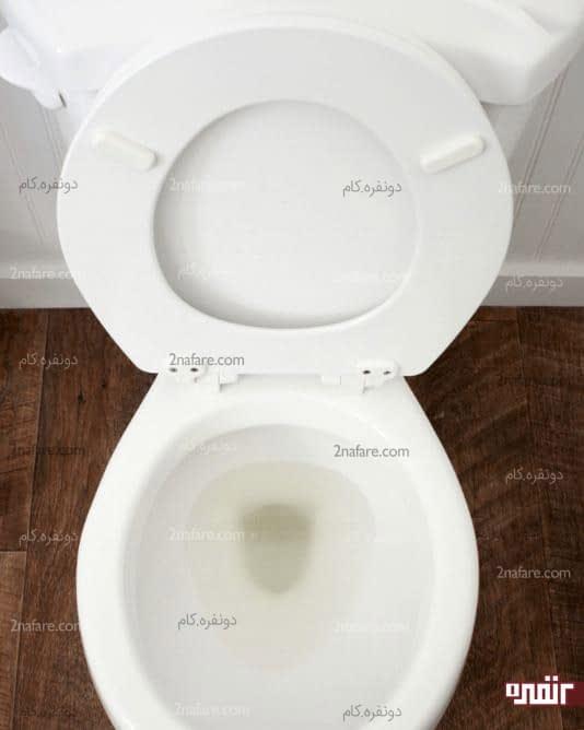 تمیز کردن توالت