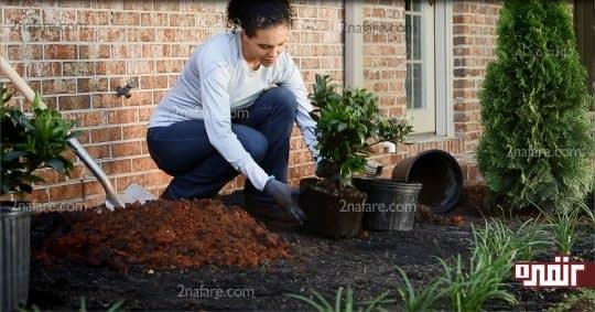 گل و گیاه بکارید