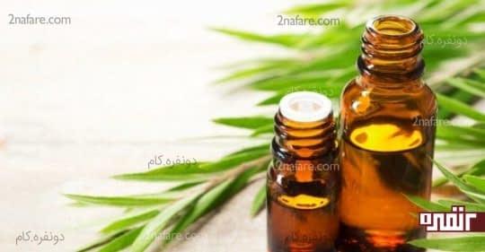 روغن درخت چای برای تغذیه پوست