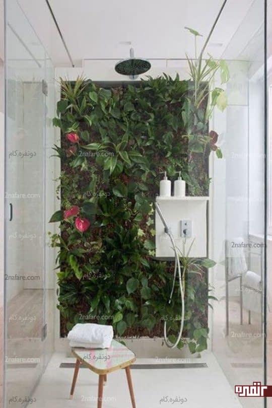 باغچه عمودی در حمام