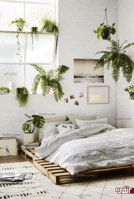 تزریق رنگ به اتاق خواب با گل و گیاه