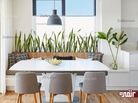 خانه سبز و سالم با تمیزکننده های طبیعی