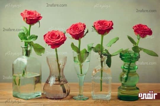 شفافیت آب گلدان و شادابی گلها