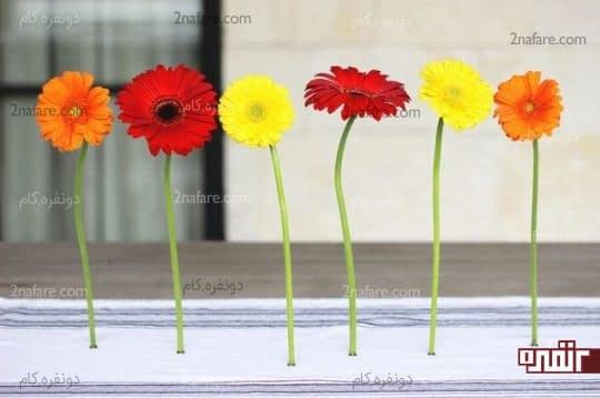 نگهدارنده مغناطیسی گلهای طبیعی