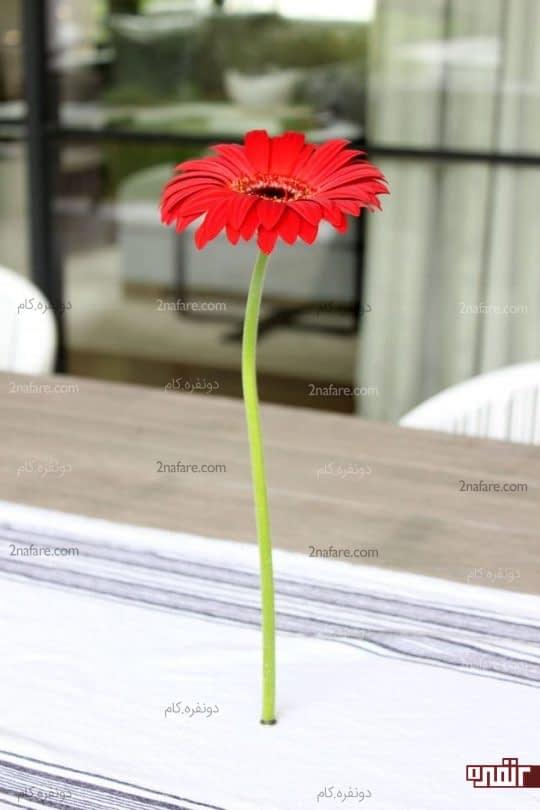 نگهدارنده مغناطیسی گل
