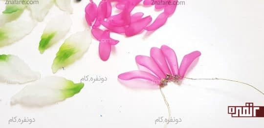 پنج گلبرگ