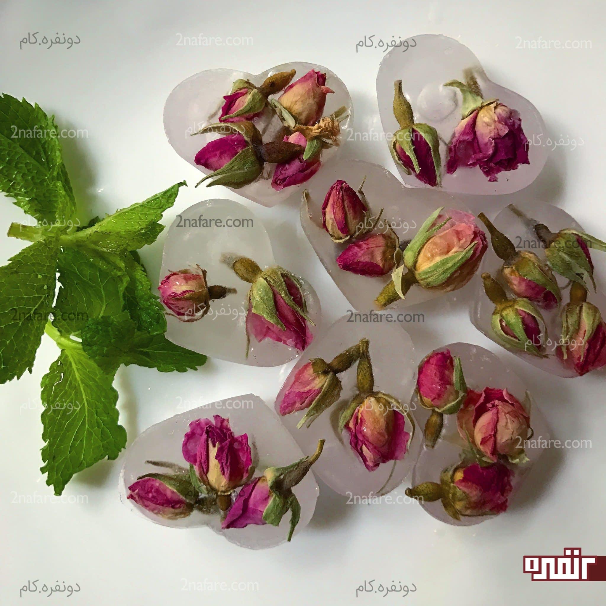 یخ های گل محمدی
