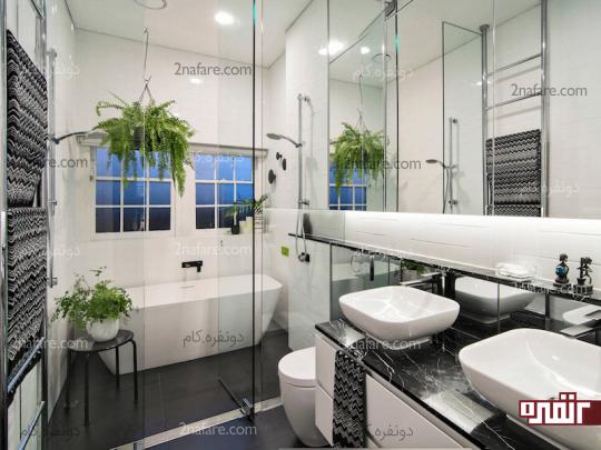 استفاده از سرخس ها برای تزیین دکور حمام و سرویس بهداشتی