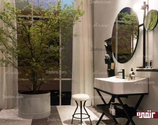 درختچه های تزیینی بزرگ برای زیبایی حمام