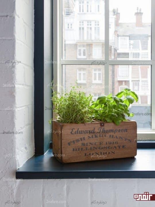 قرار دادن باکس بزیجات خانگی در مقابل پنجره و روی طاقچه