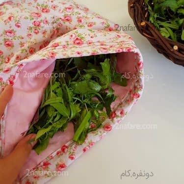 کیسه سبزی