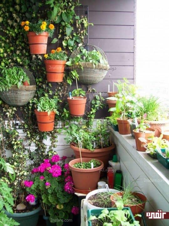 ایجاد باغچه عمودی روی دیوار بالکن