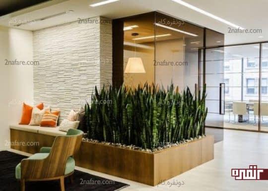 ایده های جذاب طراحی دکوراسیون داخلی با گیاهان