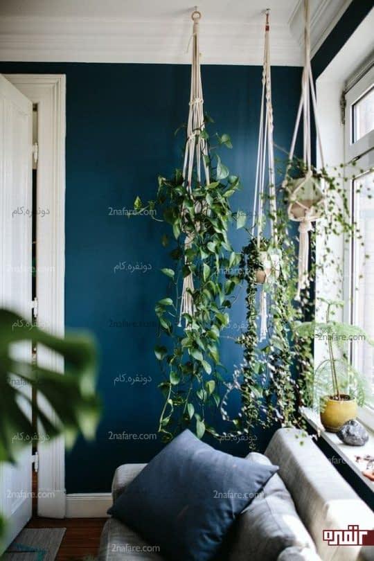 استفاده از گیاهان در نقاط مختلف اتاق خواب