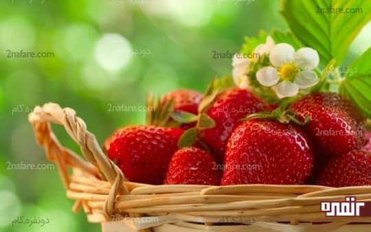 توت فرنگی میوه ی دوست داشتنی