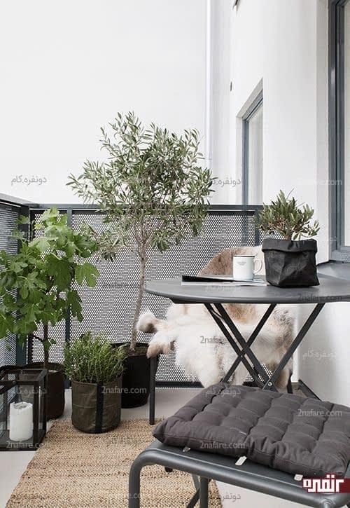 درختچه های آپارتمانی و زیبا برای تزیین تراس