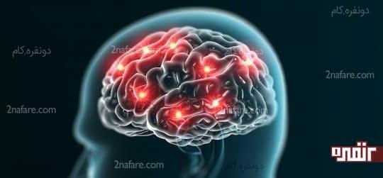 عملکرد مغز را بهبود می بخشد