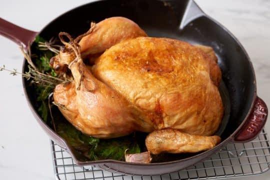 خنک شدن مرغ